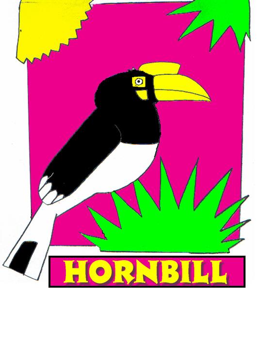 hornbill-png