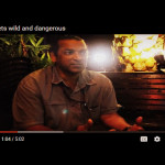 irshad-mobarak-it-gets-wild-and-dangerous